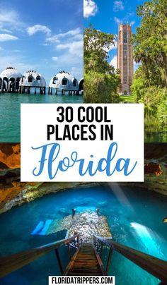Tampa Florida, Road Trip Florida, Florida Travel Guide, Florida Vacation, Vacation Places, Dream Vacations, Vacation Spots, Places To Travel, Travel Destinations