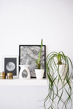 My plant shelfie   My Paradissi #urbanjunglebloggers