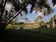 First thing this morning, tranquility hung in the air. Water like glass and bird chirping made it a morning in paradise—which, come to think of it, we are. Taken at Kauai Beach Villas.