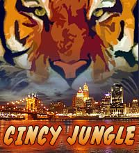40 Best Cincinnati Bengals images | Cincinnati Bengals, Big cats  supplier