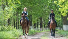 Equestrian sports caused more TBIs than any other category of activity included in a recently published study.