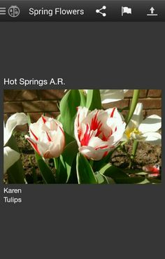 Karen from Hot Springs gets credit for this, beautiful!! It's from Weatherbug app. (Photos)