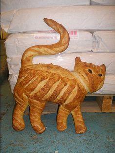 Catsparella: Cat Bread AKA Real Life Kitty Loaves