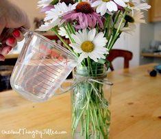 Ways To Use White Vinegar In The Garden