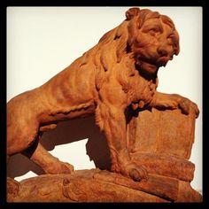 Lion with book Antwerp Plantin-Moretus museum