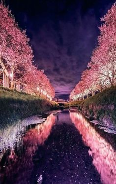 Pin by Natalia Avendaño on ⩕ Scenery ⩖ in 2019 Fotos Wallpaper, Nature Wallpaper, Amazing Photography, Landscape Photography, Nature Photography, Beautiful World, Beautiful Places, Beautiful Pictures, Japan Landscape