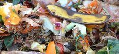 enrichir compost avec peau de banane