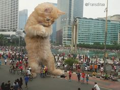 Catzillas: Giant Cats In Urban Landscapes