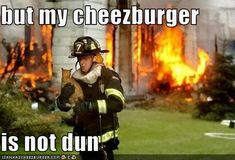 cats and cheeseburgers - Google Search