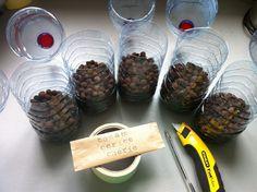 Nouvelle méthode pour mon semis de tomate en bouteille, étape 1 : remplir 1/3 de la bouteille avec des billes d'argile Etape 2 : recouvrir les billes d'argile avec de l'eau, ajouter du terreau et semer quelques graines (j'en ai disposé 5 par bouteille Etape 3 : couvrir les graines d'un peu de terreau, refermer les bouteille avec du scotch et étiqueter les bouteilles Etape 4 : placer près d'une fenêtre  Selon cette méthode, on laisse les bouteilles fermées : elles vont naturellement…