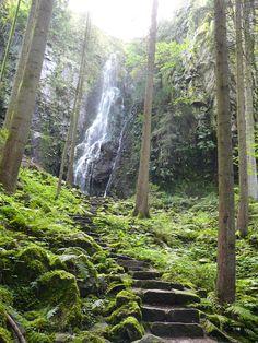Burgbach Wasserfall, Zwarte Woud