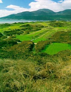 Royal County Down Golf Course Newcastle Northern Ireland