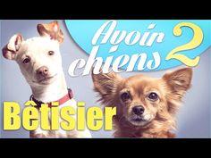 """Bêtisier """"Avoir 2 chiens"""" - Natoo - YouTube"""