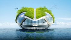 Designed to purify the water as it moves..Floating garden.. need I say more?