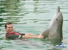 Me and a 9 year old male inshore bottlenose dolphin named Huey during my first TFAD - Sea World, Gold Coast, Australia, 21/3/17