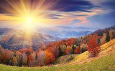 """""""Per questo preferisco di gran lunga l'autunno alla primavera, perché in autunno si guarda il cielo. In primavera la terra.""""  SÖREN AABYE KIERKEGAARD"""