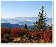 Information & History of the Great Smoky Mountains National Park  http://www.visitmysmokies.com/great_smoky_mountains_national_park.aspx#