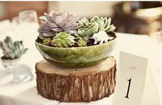Like the idea of a wood slice centerpiece- place lavender on top, mini herbs or succulents around the sides