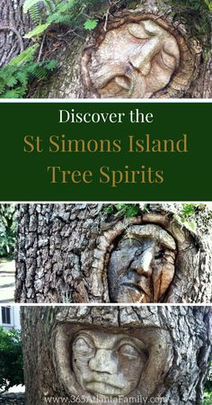 One of the most unique things to do on St. Simons Island is search for the tree spirits carved into the majestic live oak trees on the island. Jekyll Island Beach, Jekyll Island Georgia, Georgia Islands, Tybee Island Georgia, St Simons Island Georgia, St Simon Island Ga, Places To Travel, Places To Go, Travel Things