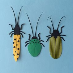 Day 99: Beetles #100daysofpapercutz #the100dayproject #cutpaper #beetles #papermade #illustration #illo #entomology Insect Crafts, Insect Art, Bug Crafts, Paper Crafts, Kirigami, Craft Projects For Kids, Diy For Kids, Art Projects, Bug Art