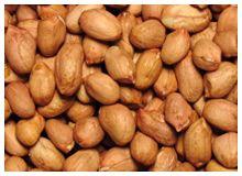 Inicio Beans, Vegetables, Food, Essen, Vegetable Recipes, Meals, Yemek, Beans Recipes, Veggies
