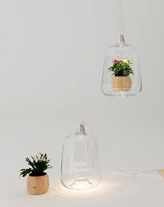 DZine Trip | Lamp with an inner beauty | http://dzinetrip.com