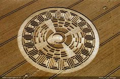 lucy pringle -crop_circles - Google Search