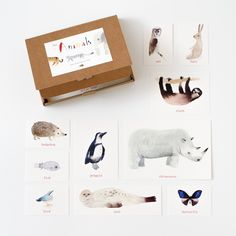 Learn Animal Names Cards – sarah & bendrix KIDS Toddler Gifts, Toddler Toys, Baby Toys, Kids Toys, Toddler Learning, Baby Flash Cards, Modern Toys, Paper Games, Handmade Wooden Toys