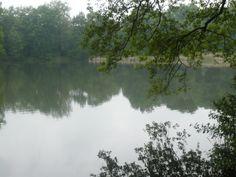 Schloß und Park Altdöbern - der Salzsee