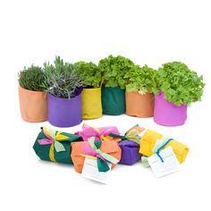 """I vasi di 13 riCrea sono idee belle e innovative che fanno bene all'ambiente!Hai poco spazio, ma vorresti avere un orto? SAKKA è un morbido """"vaso"""" ecosostenibile in tessuto non tessuto con tanto di terriccio! E non uno qualsiasi, un mix di feltro e terra di lombrico, il top per i naturalisti convinti! Contiene una MINI SAKKA, un sacchetto di terriccio TNT, un sacchetto contenente feltro da mettere nel fondo in modo da mantenere l'umidità e prevenire i ristagni d'acqua.Da oggi sono su lovli.it"""