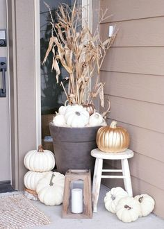 Extend a festive fall welcome for guests with a planter filled with pumpkins. Add height - and curb appeal - with a corn stalk background.