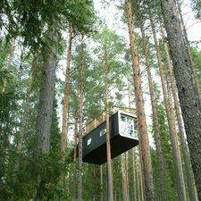Treehouse in Sweden