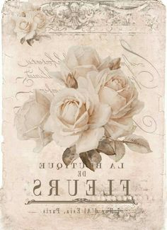 Vintage roses Digital collage free to use ♥ - Decoupage Decoupage Vintage, Vintage Diy, Vintage Rosen, Images Vintage, Vintage Labels, Vintage Ephemera, Vintage Pictures, Vintage Cards, Vintage Paper