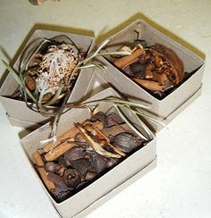 let the children play: the point preschool: use of natural materials inside the classroom