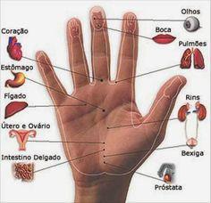 Mapa reflexológico completo das mãos, Veja como prever futuros acidentes e doenças através das mãos;   Somos Arts