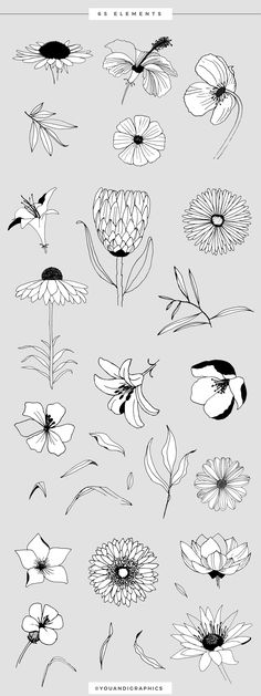 57 Ideas flowers pattern design draw hand drawn for 2019 Flower Illustration Pattern, Illustration Simple, Illustration Design Graphique, Illustration Blume, Pattern Design Drawing, Flower Pattern Design, Flower Patterns, Flower Designs, Design Patterns