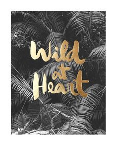Affiche Wild at heart - Congo Studio - photo 1 Wild At Heart, Quotes To Live By, Me Quotes, Motivational Quotes, Inspirational Quotes, Photo Quotes, Gold Quotes, Heart Poster, Camping Photography