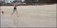 Just a normal day at the beach in Australia…