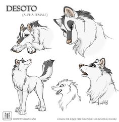 Sketches Desoto by TaniDaReal.deviantart.com on @DeviantArt