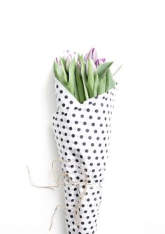 purple tulips wrapped in polka dot tissue paper