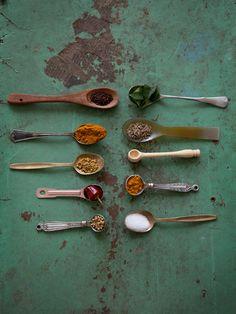 Madras Fish Curry Spice // Elise Hanna