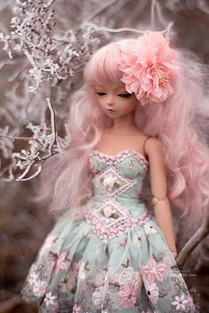mint fairy | Flickr : partage de photos !