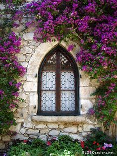 lovely window via Amy Deska