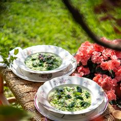 Risotto knows no seasonal bounds. Try this recipe for springtime risotto with nettles.