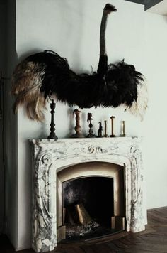 the perfect fireplace pet