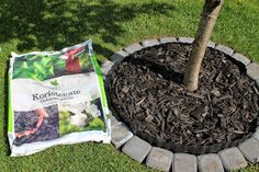 Multsin puutarha ja koti: Nurmikon rajaaminen istutuksista Summer Garden, Home And Garden, Sundial, Garden Plants, Outdoor Gardens, Patio, Landscape, Outdoor Decor, Flowers