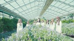 Lovelyz release an enchanting prologue film for their upcoming mini-album Mystic Girls, Bubblegum Pop, Korean Music, Korean Girl Groups, Teaser, Mini Albums, Destiny, The Selection, Music Videos