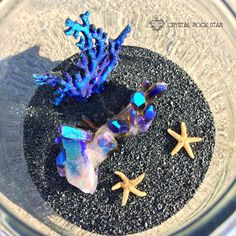 Keep the magic of the ocean close to your heart with this mermaid fairy crystal garden terrarium, or as I like to say, a mermaid crystal oceanarium! A great gift idea for the holidays for those in your life that love mermaids, dolphins, sealife or have a connection to Lemuria or Atlantis! Visit www.crystalrockstar.etsy.com