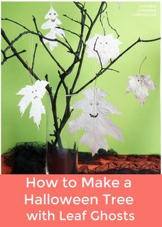 A spooky and simple Halloween craft project to make. Create your own Halloween tree from things you can find in your backyard! And why not fill the Halloween tree with floaty leaf ghosts?! #halloweencraftforkids #Halloweencraftfortweens #Halloweentree #Halloweendecor #kitchencounterchronicles #naturecraftsforhalloween Halloween Activities For Kids, Halloween Trees, Halloween Crafts For Kids, First Halloween, Craft Projects For Kids, Halloween Season, Craft Activities, Fun Crafts, Halloween Decorations