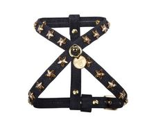 Only For Stars - Dog Harness
